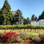 Foto de Wine Country Farm