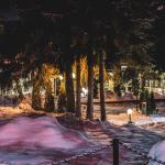 Snowy Breza