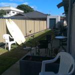 The backyard space