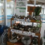 桜島軽石鉢