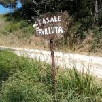 Photo de Casale Favilluta