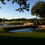 Steigenberger Hotel Treudelberg 27-Loch Golfanlage
