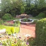 The water feature garden to the side of one of the lounges