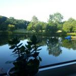 Blick aus dem Restaurant auf den See