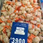 Fresh Tasmanian scallops yum