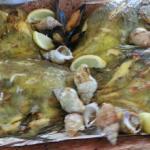 La bouillabasse, les poissons et bulots