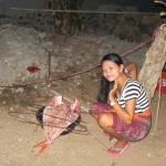 Photo of Warung SRIDANA