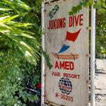 Kid's introductory scuba diving lesson (complimentary when you stay in their bungalows)