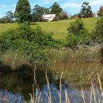 Foto de Clarendon Forest Retreat