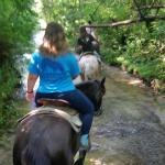 Had a blast riding with these folks our trail guide was Rachel she was very sweet the horses wer