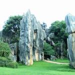 Hutan Batu