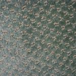 Carpet crumbs and glass