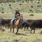 Foto de TX Ranch