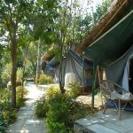 The cottage tents