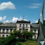 Das Schloss beherbergt das Stadtmuseum