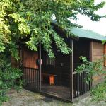 Toad Tree Cabins Foto