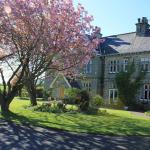 Hazel Manor's cherry trees in Spring