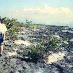 walking along the rocky shore