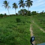 Fantastic off road experience to get to/ from the resort to the airport!