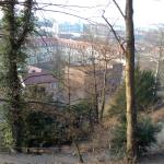 The Hill next to the Hotel from where city is visible