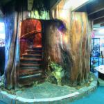 The 50 ton staircase at Northland Region Ancient Kauri Kingdom