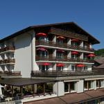 Photo of Hotel Brienz