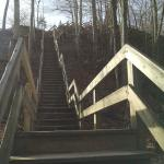 Fort Hill Loop Trail - just beyond the Nature Center
