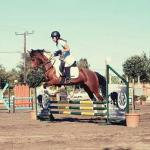 Rethymno Horse Riding Club