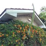 Lovely flowers & landscaping at Jumuia Guest House, Nakuru, Kenya