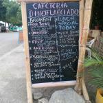 Cafe Dinoflagelado