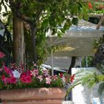Breakfast/drinks terrace