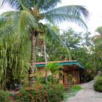 Foto de El Sueno Tropical