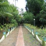 Towards Garden