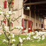 I peri sono in fiori e Ca' Lealtà si tinge di bianco