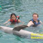 Dolphin Close Encounter Foto