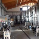 where the wine is made