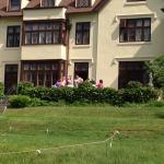 Pre wedding celebration on back lawn, perfect!