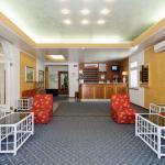 Photo of Hotel Al Mare