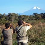 Sigor Travel Jungle Day Tours