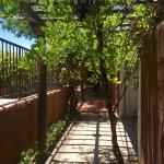 Foto di Adobe Garden