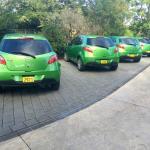 Broad Leaf cars, the Kermit racing team