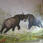 Woolly Mammals