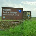 Attwater Prairie Chicken National Wildlife Refuge