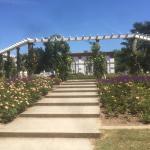 Palmengarten und Botanischer Garten