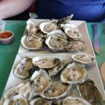 Best oysters at the beach