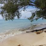 plage juste aux pieds des bungalow