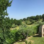 Agriturismo Ampugnano Picture