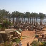 Foto de Nubian Island Hotel