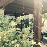 A J's patio