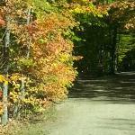 The road running thru the campground